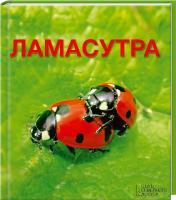 Лесовикова Елена Ламасутра 978-966-14-4702-7
