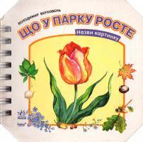 Верховень Володимир Що у парку росте. (картонка) 978-966-08-4309-7