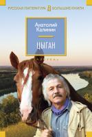 Калинин Анатолий Цыган 978-5-389-10403-7