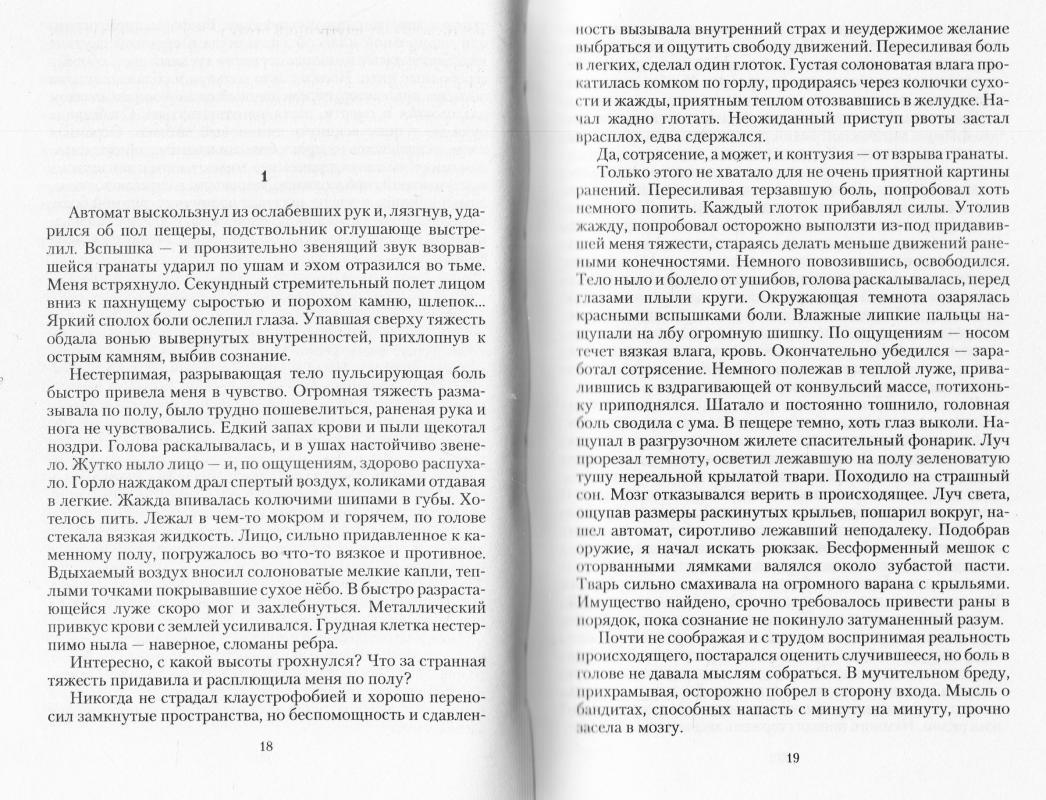 виктор шайди все книги иероним 2