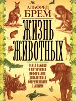 Брем Альфред Жизнь животных. Самая важная и интересная информация, дополненная современными данными 978-5-17-052450-1