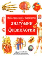 Доктор Джеймс Бивэн Иллюстрированное руководство по анатомии и физиологии 5-86290-320-8